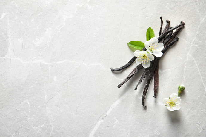 The Basics Of Vanilla
