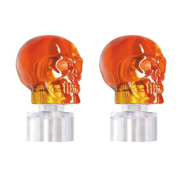 Stainless Steel PlasticBumper Guide Kit with Amber Skull Lights