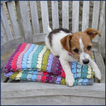 rainbow crochet blanket with puppy