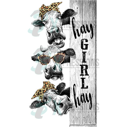 hay girl hay cows - bling3t