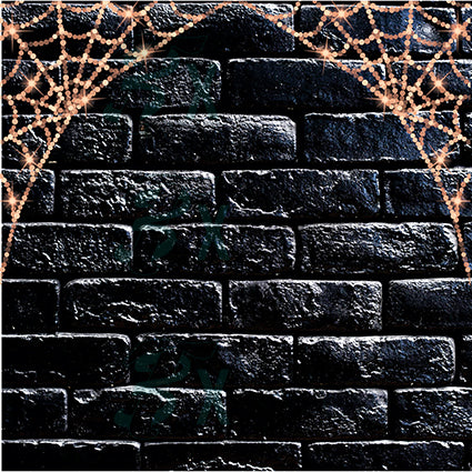 Black Brick Spiderweb backdrop