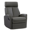 Genuine Leather Tall Backrest Recliner