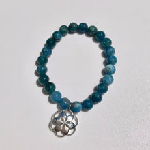 Load image into Gallery viewer, Apatite Bead Charm bracelet Rosette Hannah Daye & Company
