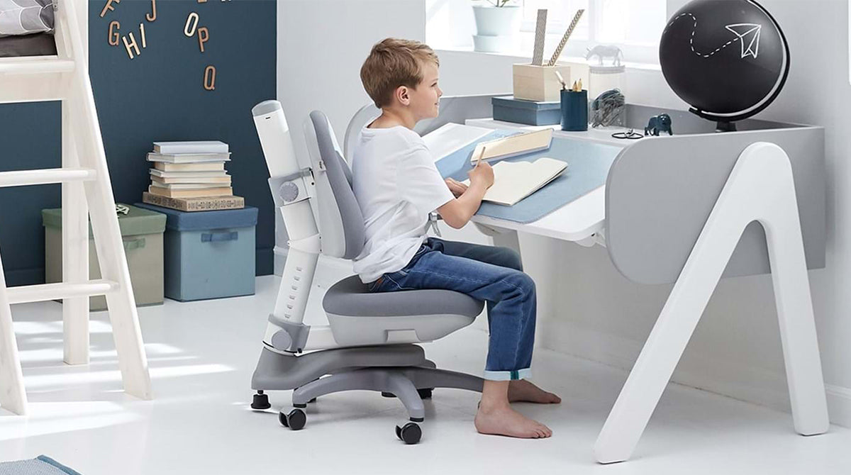 The study collection includes study desks and study chairs. To ensure the right study environment for safe learning for the children, height adjustable and tilt-able desktops are some of the ergonomic functions, the study desks offer.