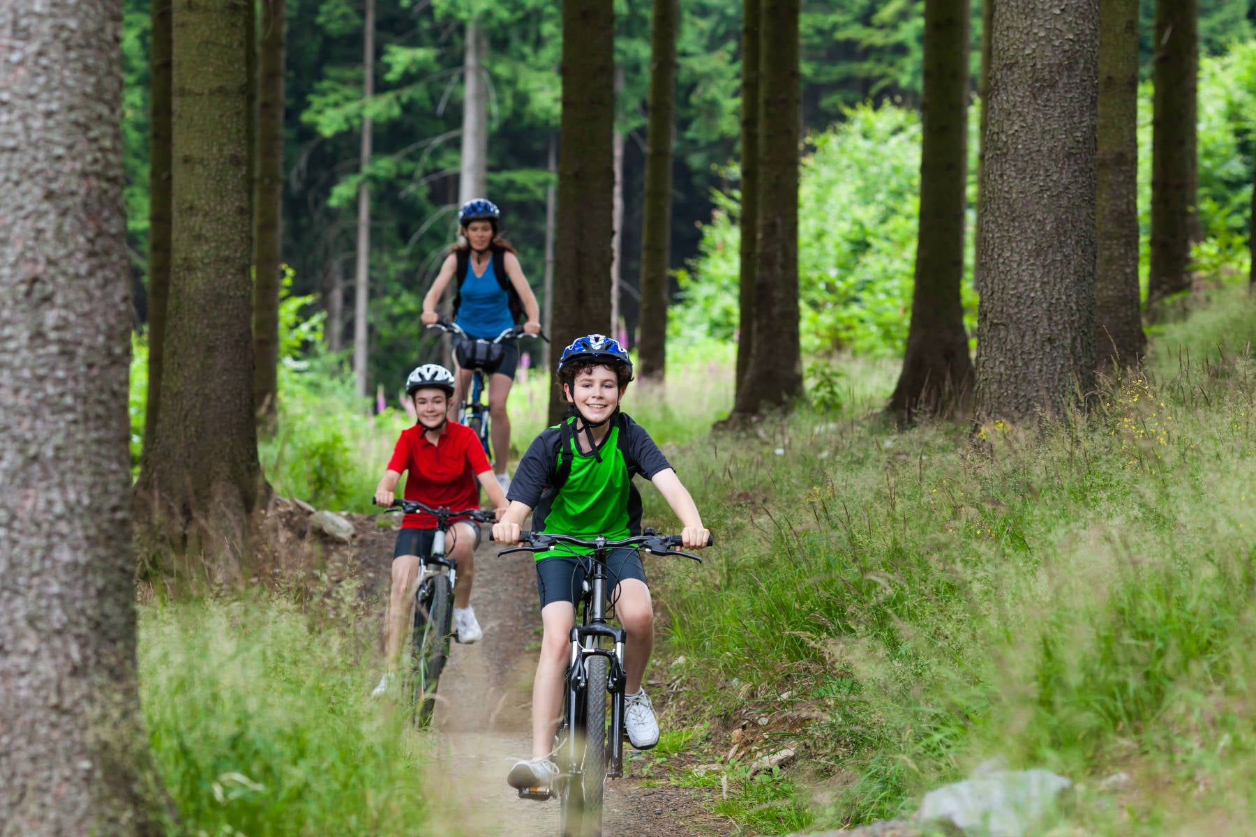 Active family biking on mountain biking trail in the woods on a summer day