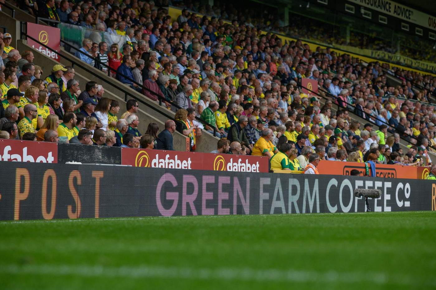 Norwich City Football Club Playing