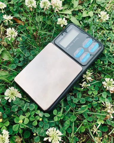 The Truweigh Marine Washdown pocket scale is laying in grass with some small white flowers surrounding it.