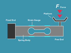 How Digital Scales Work - The Truweigh Blog Strain Gauge Load Cell Diving Board Spring Technology