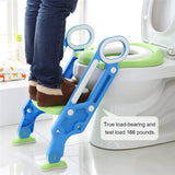 Potty Training Seat for Toddlers with Step Stool Folding Ladder