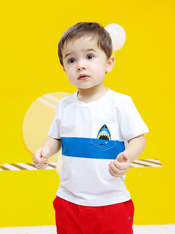 Little Boys Shark White T-shirt