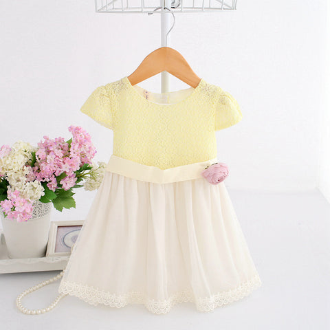 Infant & Toddler Girl Limited Edition Birthday Wedding Lace Boutique Dress