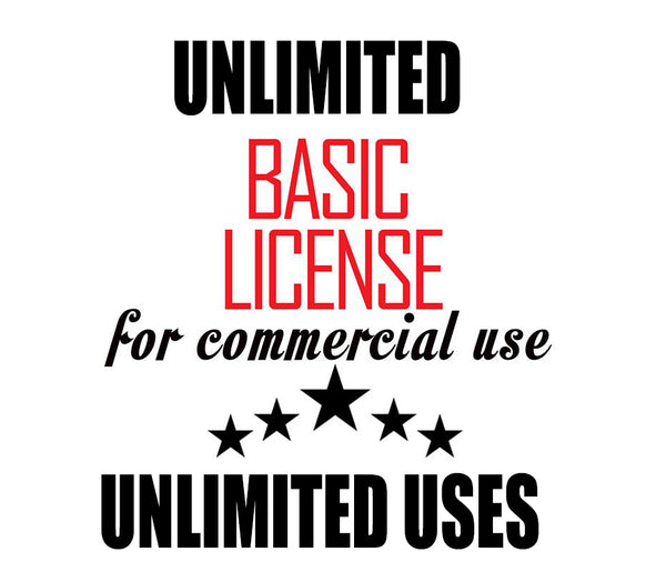 100 to 500 Designs Basic Commercial License for Commercial Use of Patterns, Graphic Design - unlimited prints / usage
