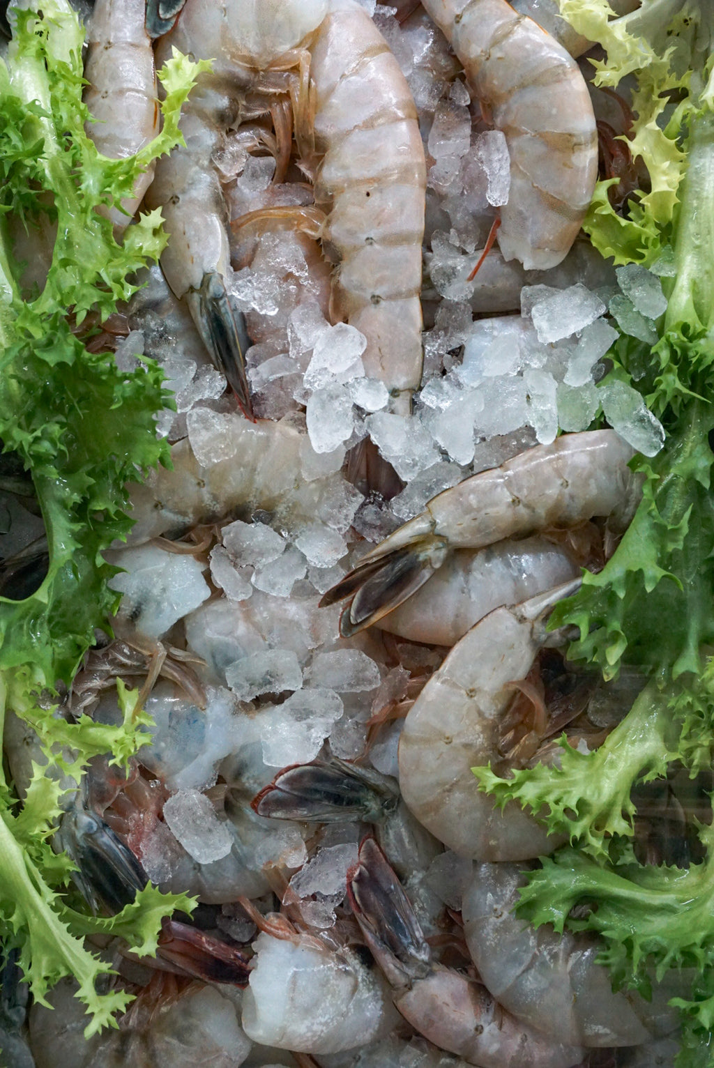 Large Shrimp (Peeled and Deveined)