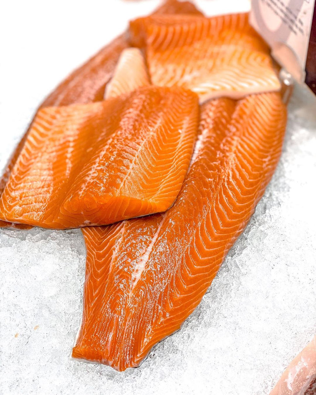 fillets of rainbow trout