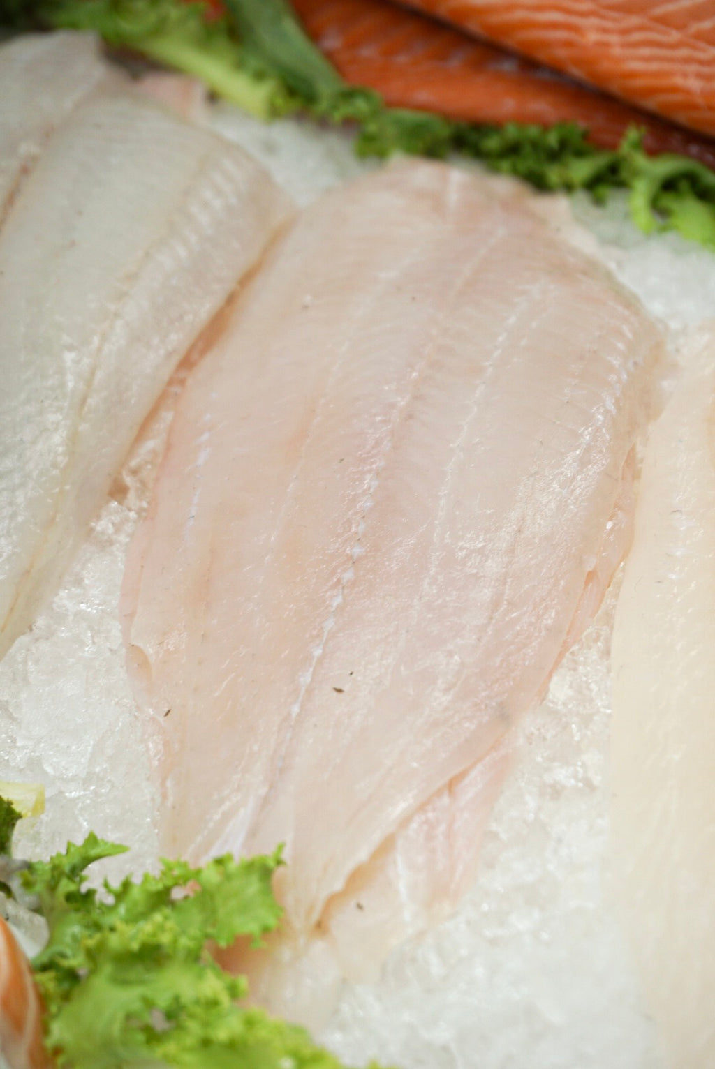 Fillet of lemon sole