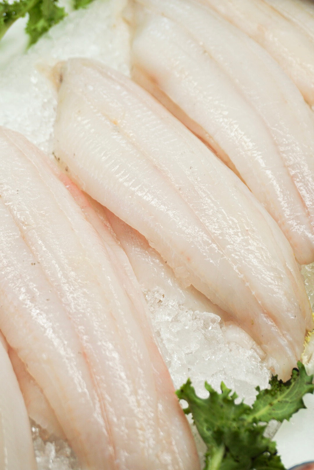 Grey Sole Fillet - Delivery