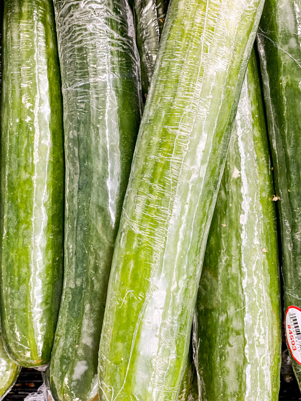 Seedless Cucumber - New Canaan
