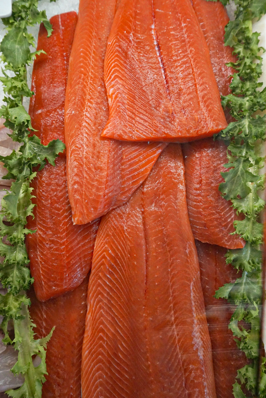 Coho Salmon - Delivery