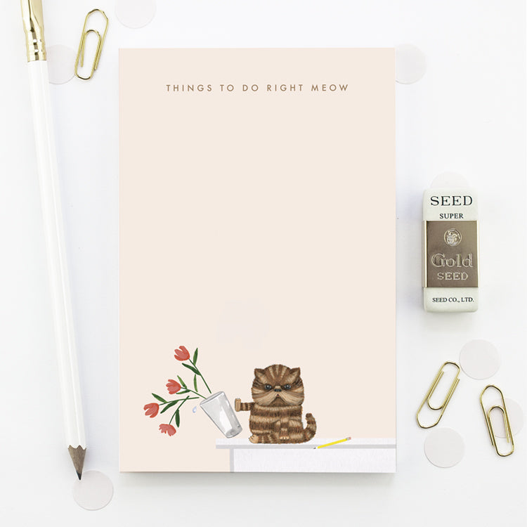 Things To Do Right Meow Notepad
