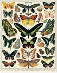 Cavallini and Co. Butterflies 1000 Piece Puzzle