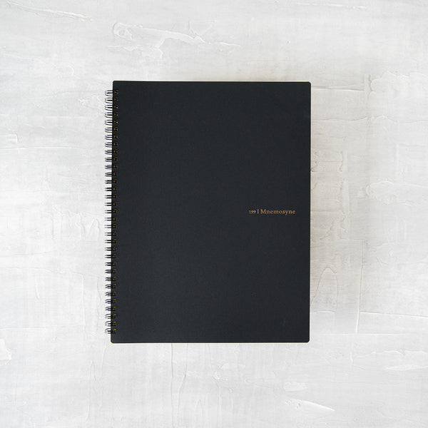 Mnemosyne Notebook 199