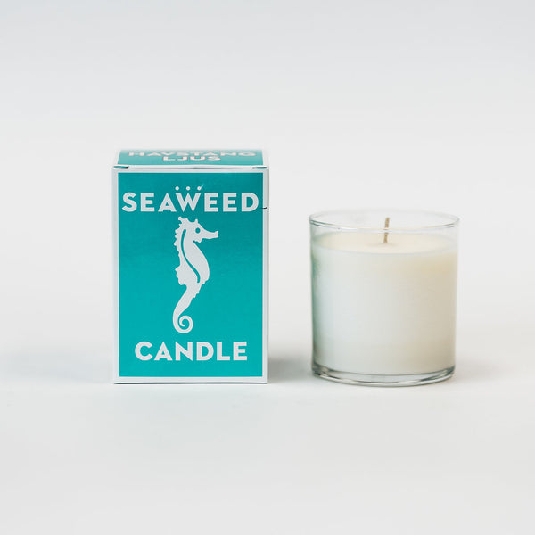 Swedish Dream Seaweed Candle