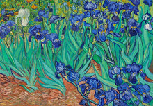 Load image into Gallery viewer, Funbox 1000pc Van Gogh Irises