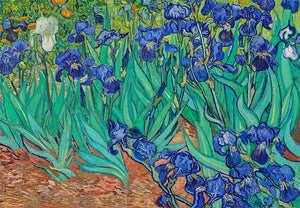 Funbox 1000pc Van Gogh Irises