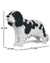 Load image into Gallery viewer, Jekca: Cavalier King Charles Spaniel