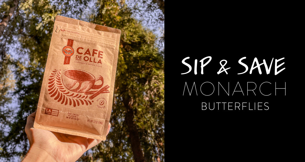 Sip and Save Monarch Butterflies