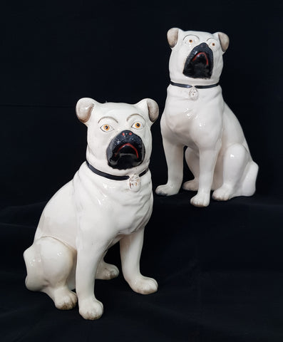 English Staffordshire Pottery Pair Pugs c1880 [BD0014]