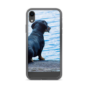 iPhone Case, dachshund staring at sea-Dachshund-Local Webstore