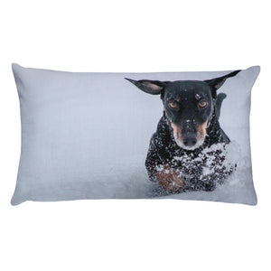 Premium Pillow, running dachshund-Dachshund-Local Webstore
