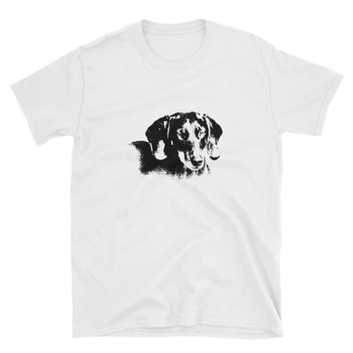 Bargain T-Shirt, smooth coat dachshund - Local Web Store - [product type] Collection