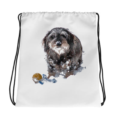 Drawstring Bag, dachshund with ball - Local Web Store - [product type] Collection