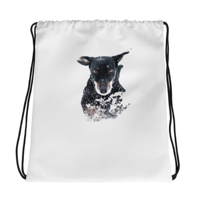 Drawstring Bag, running dachshund - Local Web Store - [product type] Collection