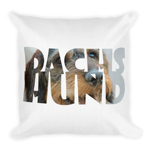 Premium Pillow, Dachshund-Dachshund-Local Webstore