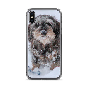 iPhone Case, dachshund with ball-Dachshund-Local Webstore