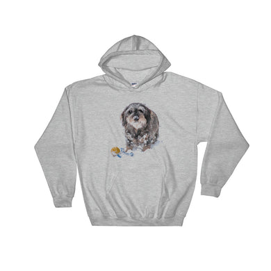 Hooded Sweatshirt, dachshunds with ball-Dachshund-Local Webstore
