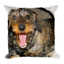 Load image into Gallery viewer, Premium Pillow, dachshund-Dachshund-Local Webstore