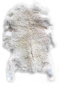 Sheep Hide