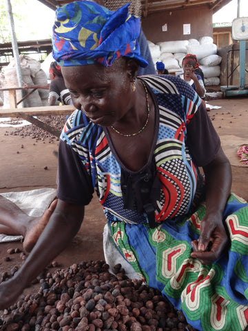 Shea queen sorting nuts for unrefined shea butter processing in Ghana