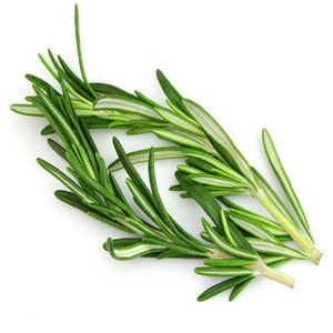 Rosemary (Verbenone) Essential Oil