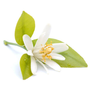 Neroli (Orange Blossom) Essential Oil