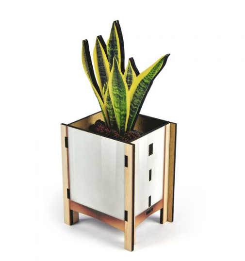 Pop Plant Desk Caddy - White - ModLoungePaperCompany