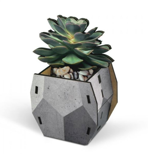 Pop Plant Desk Caddy - Gray - ModLoungePaperCompany