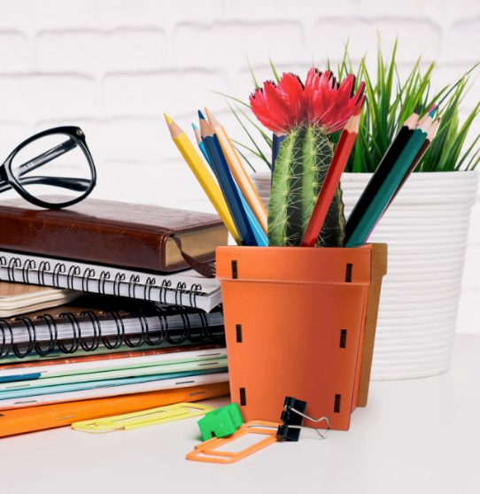 Pop Plant Desk Caddy - Orange - ModLoungePaperCompany
