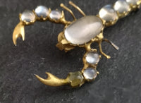 Antique moonstone scorpion brooch, Victorian 22ct gold