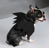 Halloween Black Bat Wings Costume for Dog and Puppies