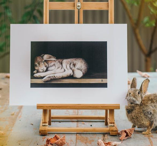 Print - Sleeping Bunny by Nikki McIvor